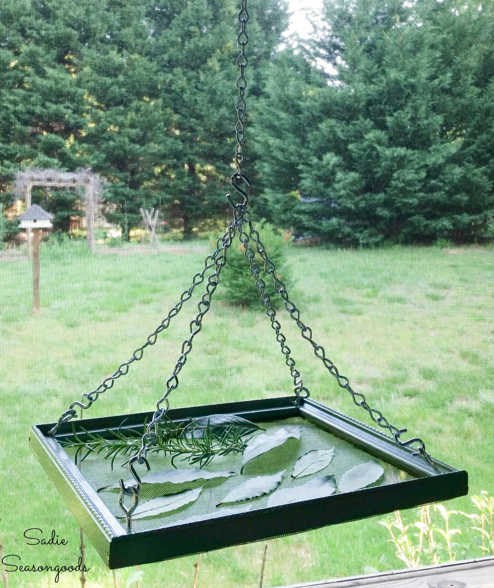 Upcycled picture frame as an herb drying rack