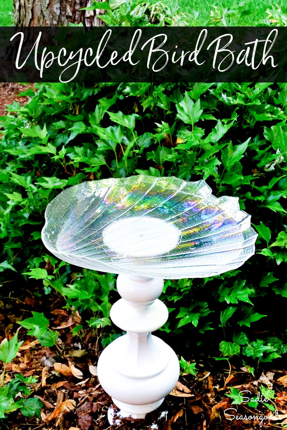 glass plate bird bath