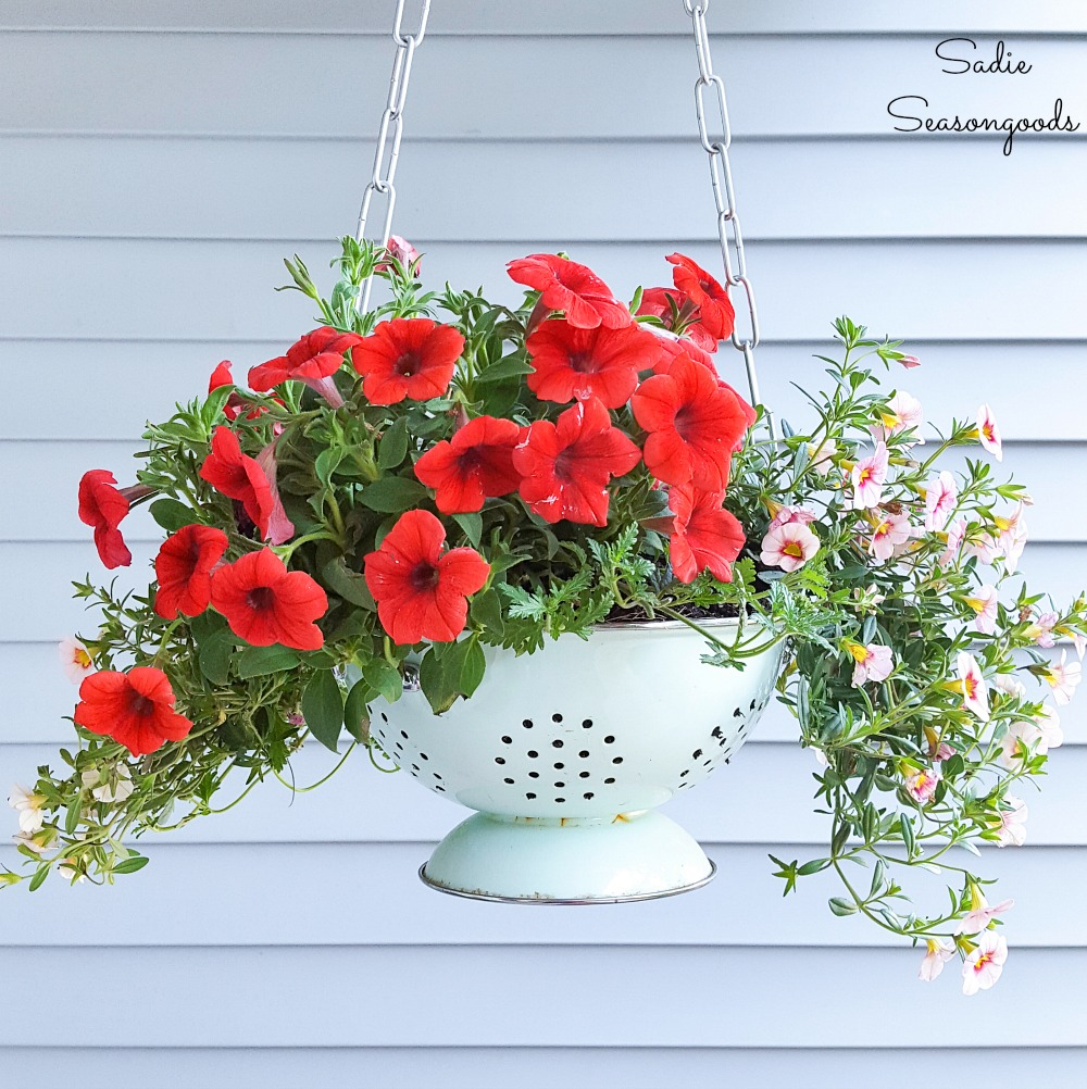 Upcycling an Enamel Colander as an Outdoor Hanging Basket