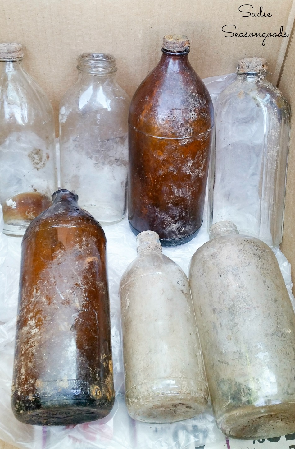 Bottle digging for old glass bottles