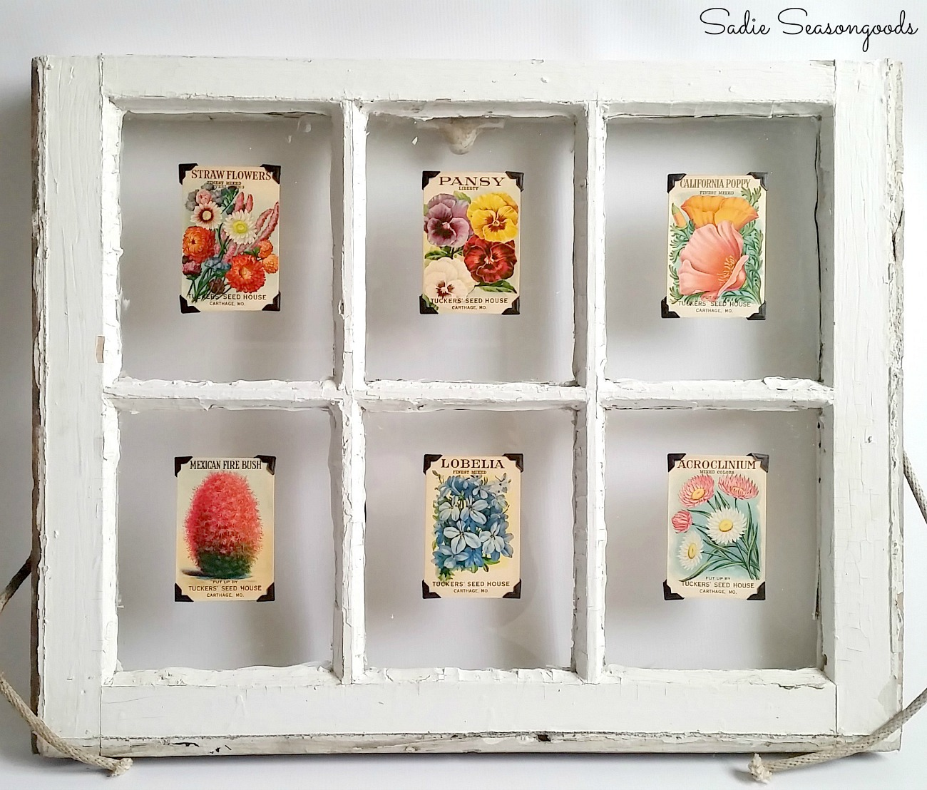 Window Pane Decor & Flower Art with an Old Window Frame