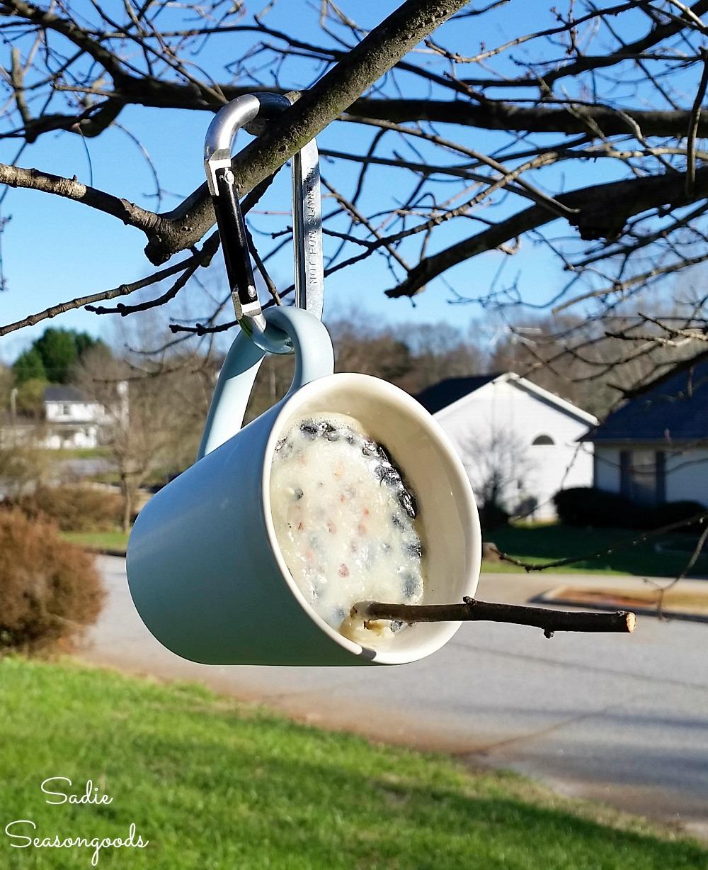 Suet feeder with homemade bird suet as a DIY bird feeder in a coffee mug from the thrift store