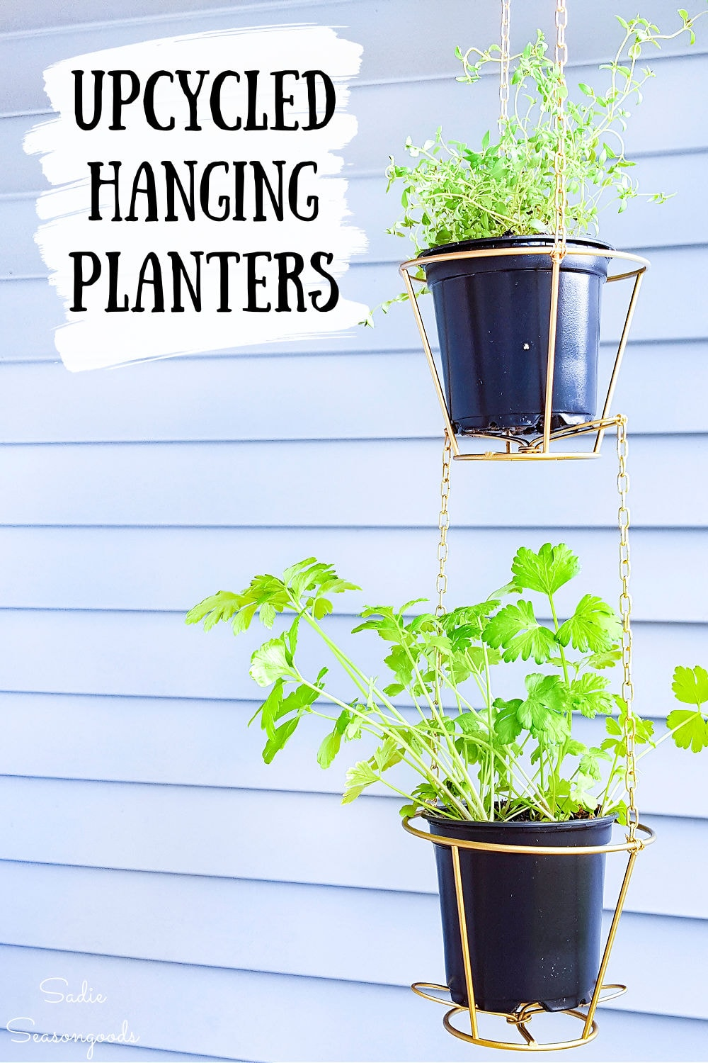 herb hanging baskets from wire lampshade frames