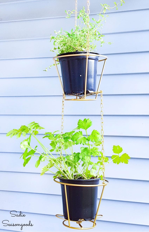 lampshade frames as hanging baskets