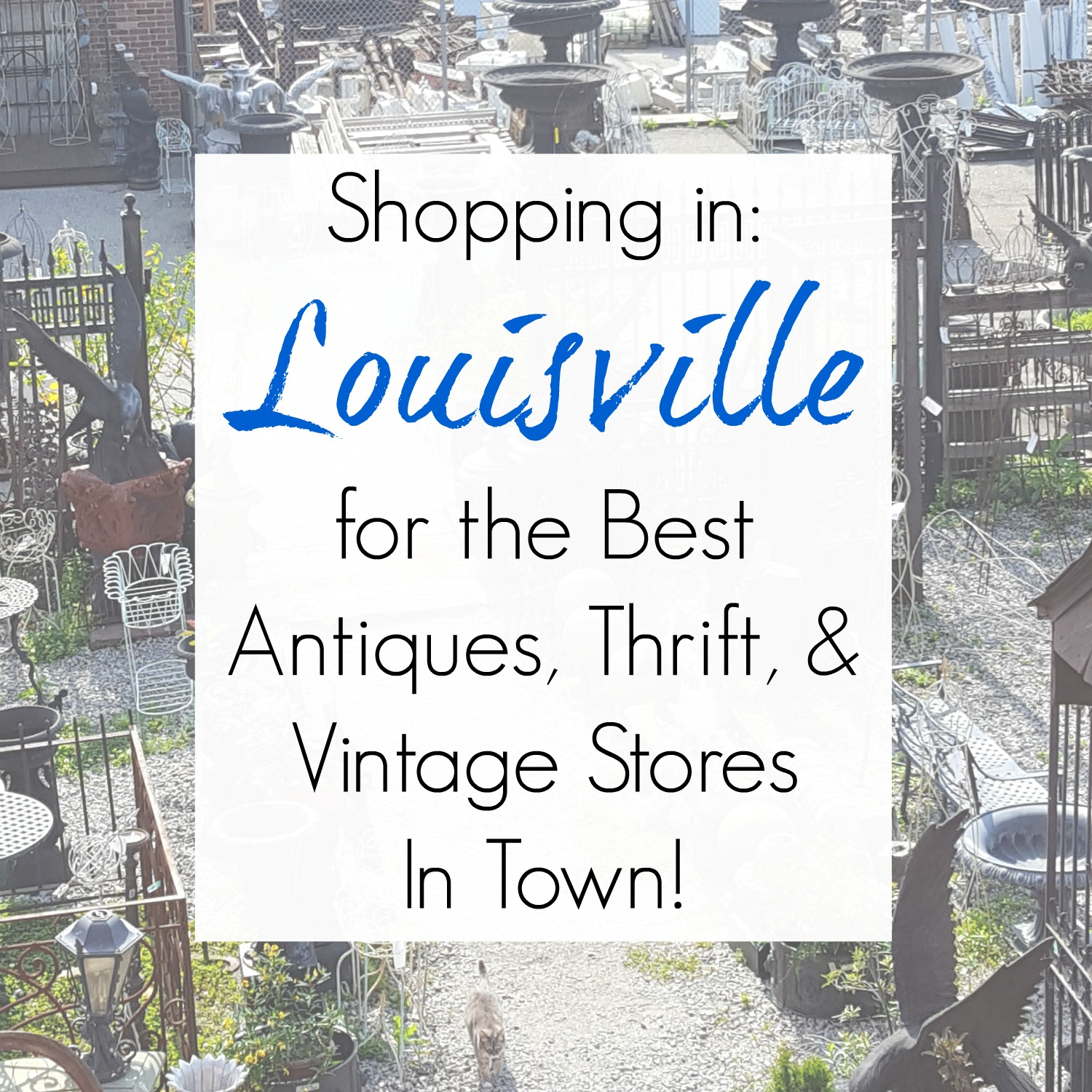 Shopping In Louisville Ky For The Best Antiques Vintage And