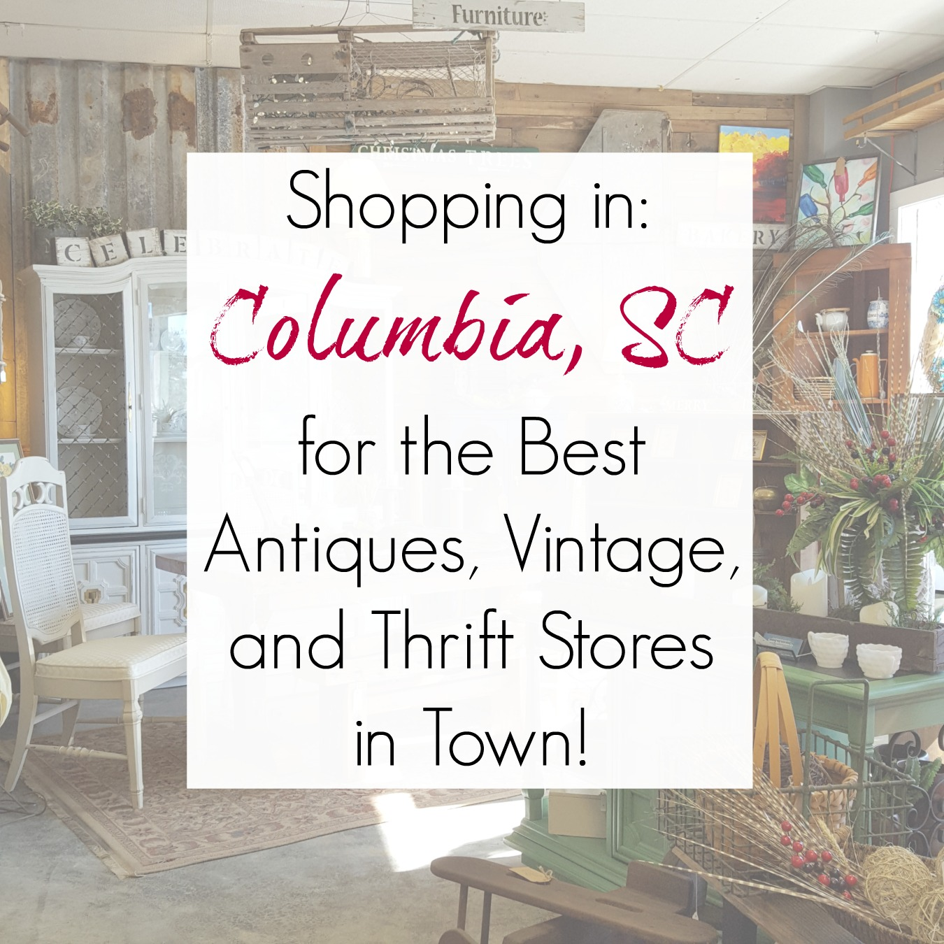 Columbia Sc Best Antiques Vintage Consignment And Thrift Stores