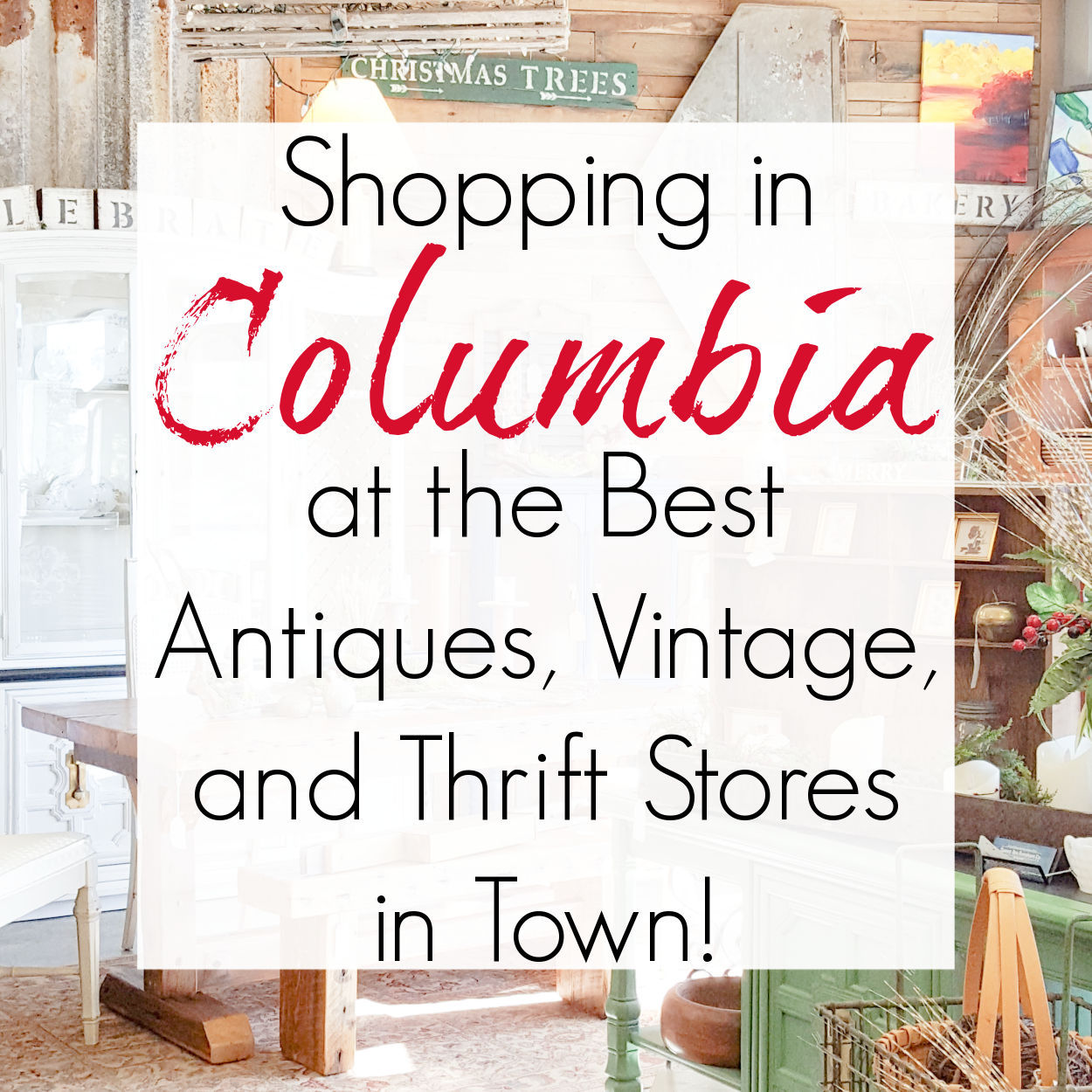 Antiquing and Thrifting in Columbia, SC