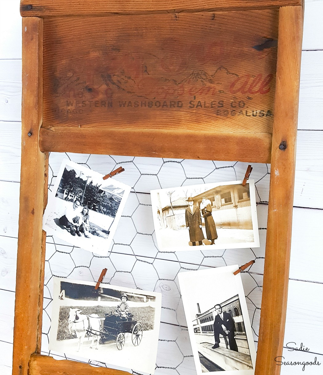 Old photographs that have been clipped to a chicken wire frame in an old washboard
