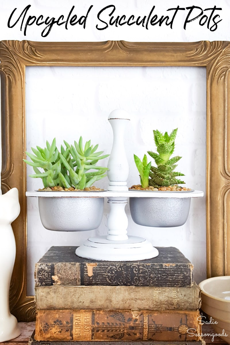 Vintage condiment caddy as a mini succulent planter