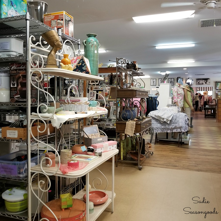 Thrift stores Hendersonville NC at Blue Ridge Humane Society Thrift Store by Sadie Seasongoods