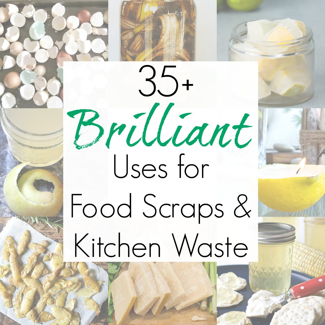 35+ Food Waste Solutions for Food Scraps and Kitchen Waste