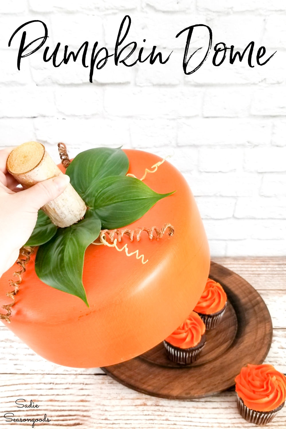 cake dome and pumpkin decor