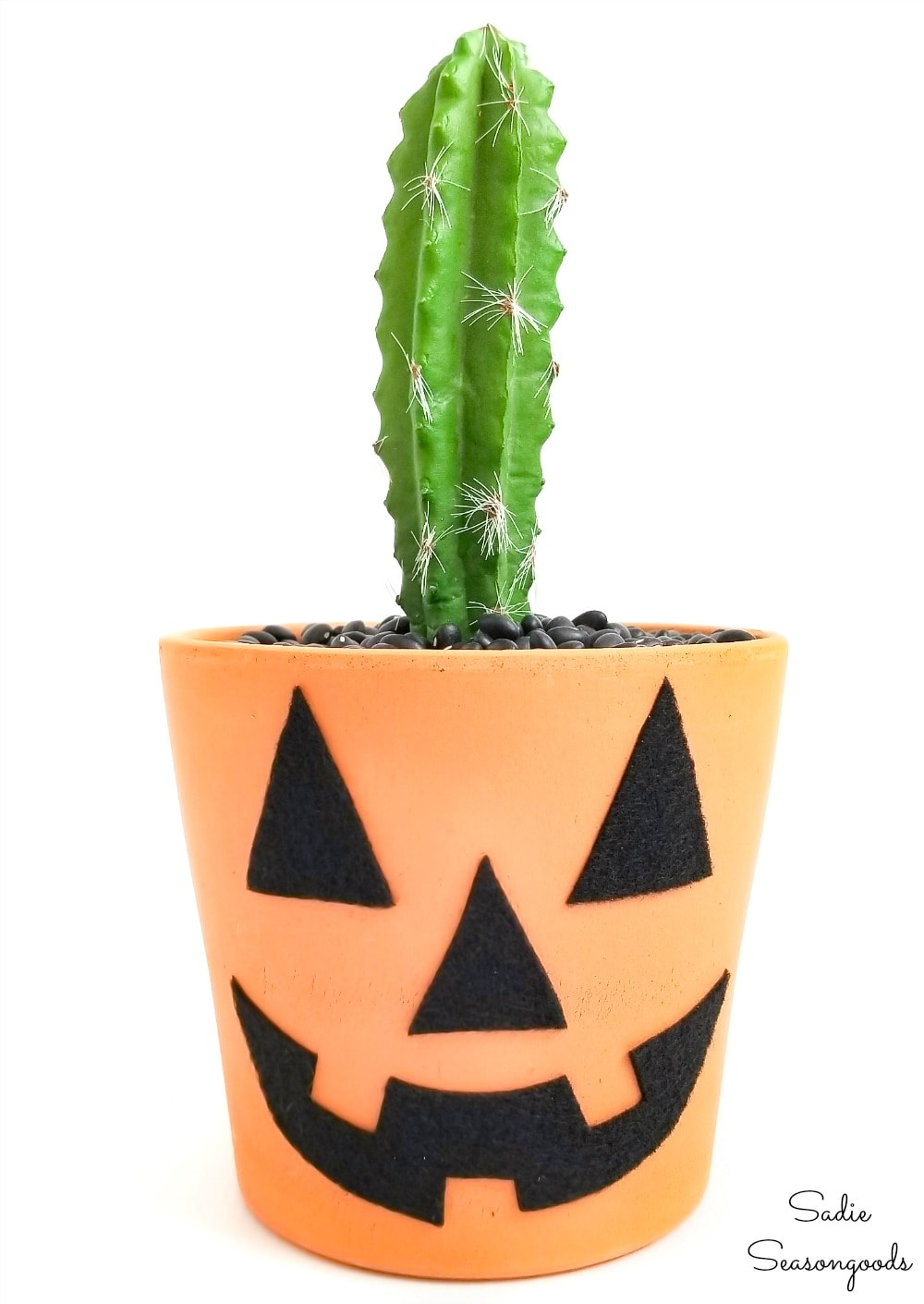 Terracotta jack o lantern with a cactus for a stem