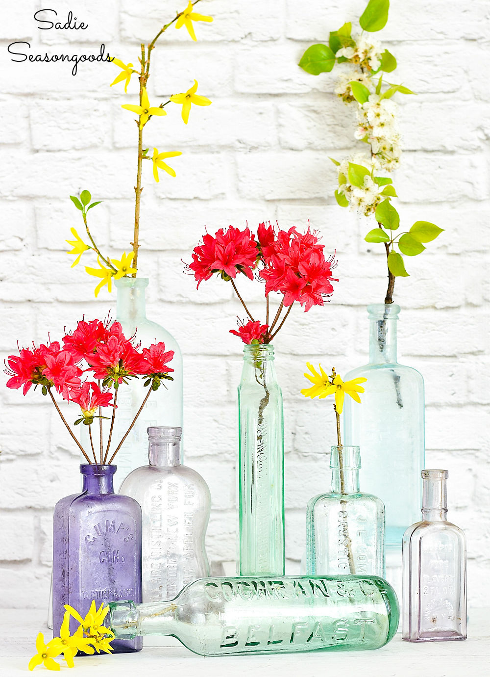 Vintage bottles as bud vases