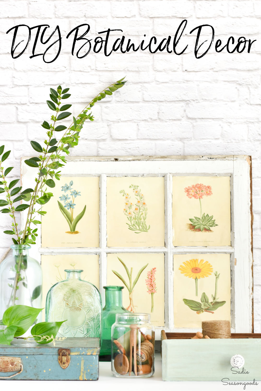 Thrifting for botanical decor