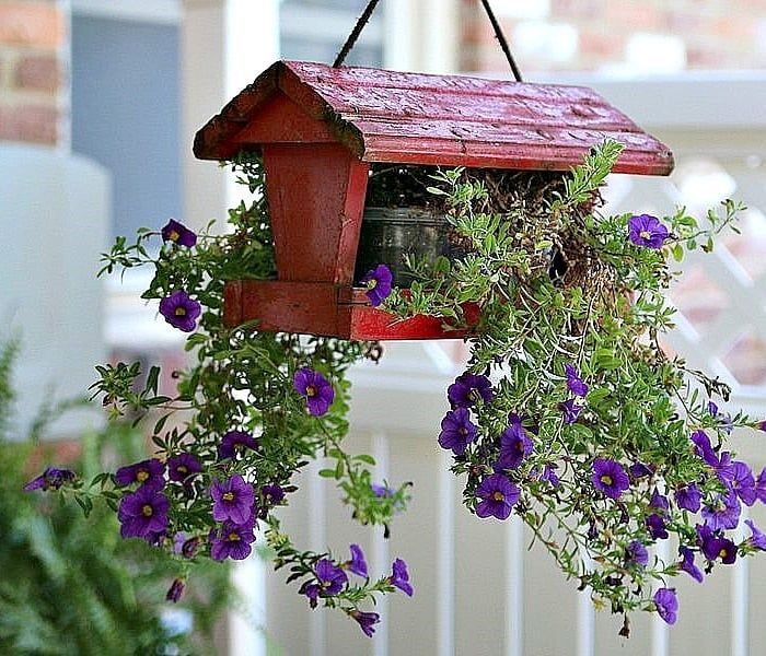 Bird feeder as a garden planter