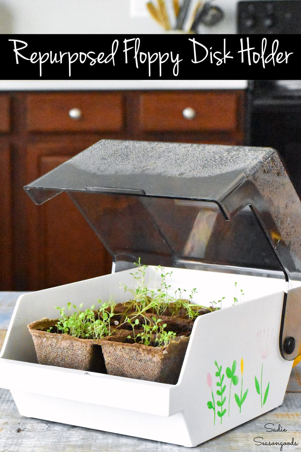 reuse a floppy disk holder as a small greenhouse