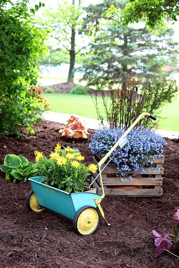Vintage seed spreader as a planter for a junk garden
