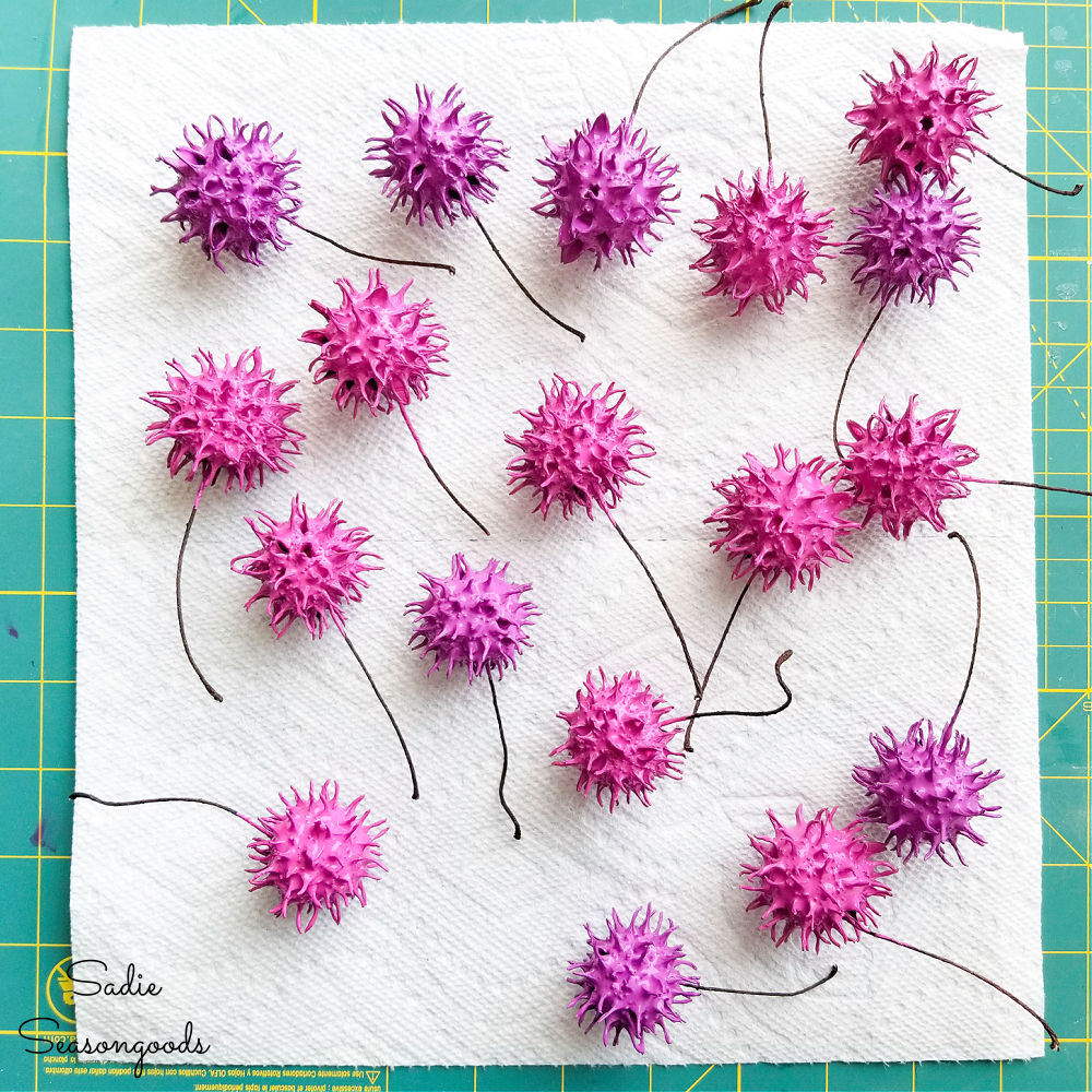 chive blossoms for decor